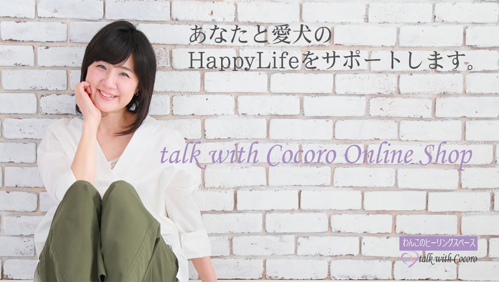 talk with Cocoro Online Shop