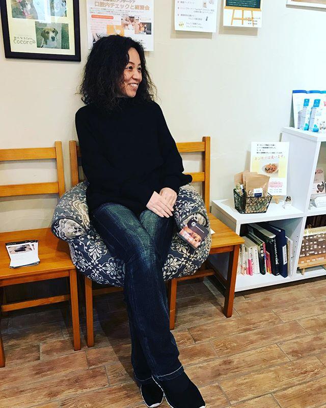️ラグジュアリーベッド️あくまでわんちゃん用!笑笑でもね人間が座ってもとーっても心地良いモデルは國田裕理ちゃん#La Shicゲリラショップ#気になるカフェcocoro#きらきらぼくらのなみだごはん#もりもりぼくらのげんきごはん#アニマルコミュニケーターsachiko (Instagram)