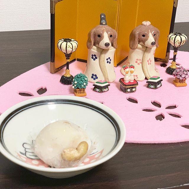 美味しすぎる大福お客様からいただいた大福が美味しすぎとろけるような食感に控えめな甘さ。とりこになりそう️アツイ視線を送るアナタにもとりこですよ️#生チョコ大福#フルーツ大福#美味しいもの#虎太郎の視線がアツイ#アニマルコミュニケーターsachiko#犬との暮らし (Instagram)