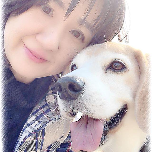 愛犬との出会い海へお散歩に。実はこの近くのペットショップでコタと出会ったのですよ初めて会った彼は3ヶ月でした。超可愛かった️でも我が家に来たのは5ヶ月だったのです。続きは…プロフィール↓ホームページ↓blogにて#ビーグル#看板犬#虎太郎#愛犬との出会い#わんことの出会い#アニマルコミュニケーターsachiko (Instagram)