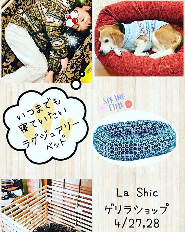 イヌもヒトもトリコになってしまう😙【ラグジュアリーベッド】今回もゲリラショップでお買い求めいただけます❣️寝心地は…⁇いつまでもここで寝ていたいだそうです。イヌ、ヒト共通の感想です🤣 ・素敵な木製ゲージも販売します。#lashicゲリラショップ#気になるカフェcocoro#4月27日28日開催#みんな来てね#新名神川西icすぐ (Instagram)