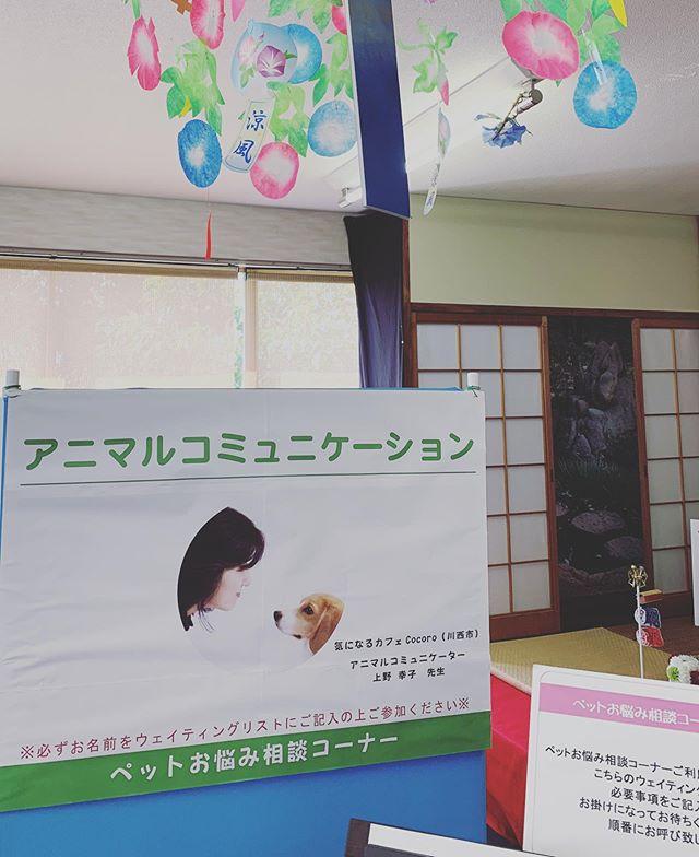 【宝塚は晴天なり】今日は宝塚動物霊園さまにてペットのお悩み相談アニマルコミュニケーションを承っております。たくさんのペットさん達が大切に愛されていたのが伝わってきます。たくさんの思いをお伝えできますよう精一杯、お志事をさせていただきます。#宝塚動物霊園#アニマルコミュニケーション#アニマルコミュニケーターsachiko (Instagram)