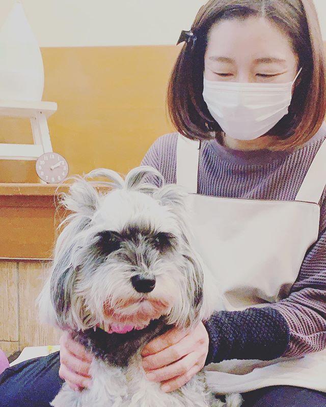 犬には勝てない今日は由貴先生の@inuseitai.kobe犬の整体DAY犬談義に花を咲かせていると由貴先生が犬には勝てませんよと。動物看護士をしていた経験から発せられた言葉は奥が深いです観察力直感学習能力そして可愛らしさ愛おしさ犬には勝てませんね🥰#犬の整体#歩く犬#犬のケア#アニマルコミュニケーションtalkwithcocoro#ペットライフコミュニケーター #上恵野倖子 (Instagram)