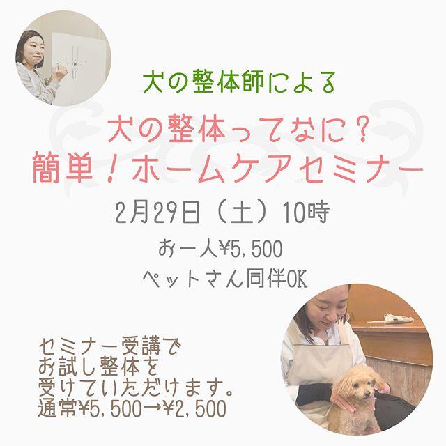 癒しの整体師歩く犬@inuseitai.kobe 犬の整体師 由貴先生によるセミナーとお試し整体を開催しまーす病気になる前に出来る事は何だろう?老化のサインって何だろう?シニアになっても寝たきりにさせたくない!いつまでも動ける体をつくりたい!そうお考えの飼い主さんにオススメしたい『犬の整体』があります2月29日 土曜日セミナーは10時よりお試し整体は13時より元動物看護士の犬の整体師由貴先生をお招きしてセミナーとお試し整体をします。由貴先生の癒しオーラとわんちゃんを思う施術に寝落ち犬が続出なんです前回も大好評ですぐに満席になりました️ピンっときた方はお早めにお申込み、お問い合わせはプロフィールよりホームページにて#inuseitai.kobe #わんこのヒーリングスペースtalkwithcocoro #犬の整体 #わんこのホームケア #自然治癒力 (Instagram)