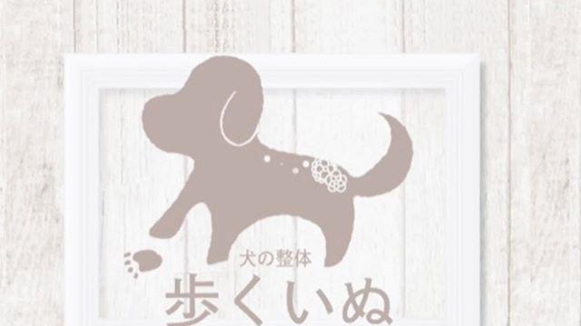 犬の整体DAY今日は犬の整体DAY@inuseitai.kobe朝からたくさんのわんちゃんが整体を受けてリラックスしていますプロのケアはもちろん素晴らしい️でも飼い主さんにもケアしてもらいたい️犬の整体師 由貴先生による【効果的で簡単なおうちケアセミナー】が2月29日に開催されます。いつまでも自分の足で歩けるように筋トレやマッサージまで由貴先生の思いと知識が詰まったセミナーですお申込みはホームページより。#歩く犬 #犬の整体#わんこのヒーリングスペースtalkwithcocoro #犬の健康管理#ペットライフコミュニケーター #上恵野倖子 (Instagram)