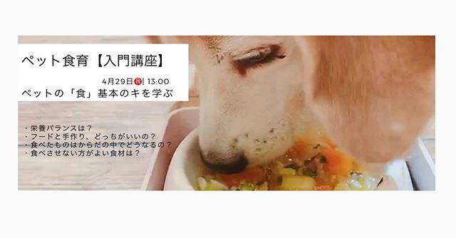 ペットの食についてこんな疑問や不安はありませんか?︎どんなフードが良いの?︎フードと手作り食、どっちが良い?︎栄養バランスが心配︎塩分はダメ?︎食べさせてはいけない食材見れば見るほど、聞けば聞くほどわらかなくなってしまう・・・ペット食育協会入門講座(ペット食育講座)では、ペットの食に関する基本を学んでいただけます。あなたとペットさんのhappylifeをおペット食育協会Ⓡ指導士 上恵野倖子がお手伝いします♪お申込みはホームページかダイレクトメッセージにて。★ペットさんの同伴はできませんので  ご注意くださいませ。開催場所兵庫県川西市清和台東1-3-6talk with Cocoroにて最寄り駅阪急宝塚線 川西能勢口JR宝塚線 川西池田 いずれかより阪急バス 清和台営業所行 清和台1丁目下車 すぐ新名神 川西ICより1分駐車場5台完備#ペット食育協会 #ペット食育入門講座 #ペット食育協会指導士 #ペットライフコミュニケーター #上恵野倖子  (Instagram)